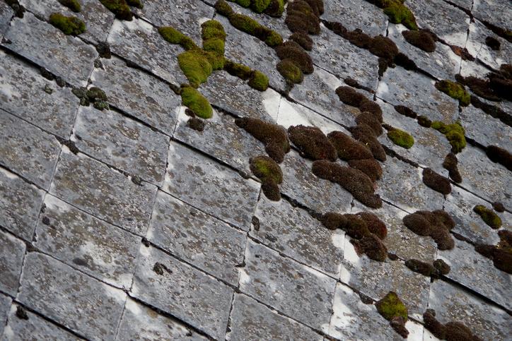 L amianto nelle architetture del novecento dove si trova e come